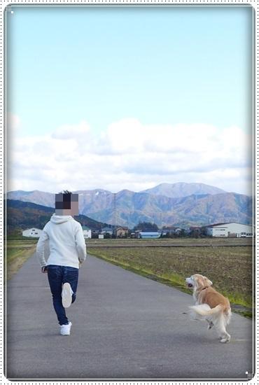 2017,11,17お散歩3