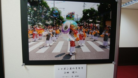 IMG_20171005_142227.jpg