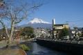 浅間大社富士宮本宮から見る富士山③