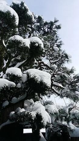 0112yukitsuri01.jpg