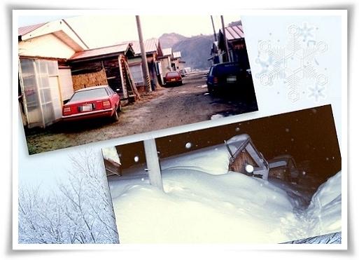 笹子の冬 a
