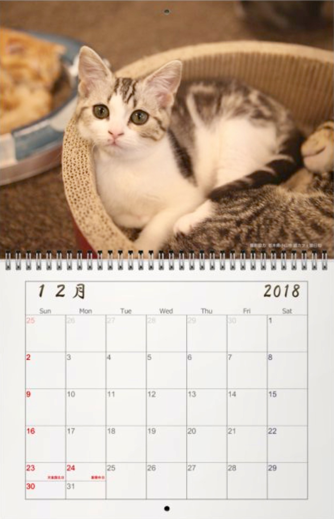 オルタナカレンダー2018、仕様