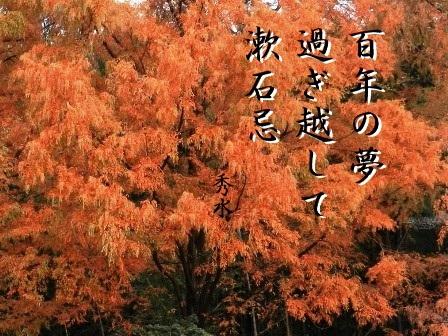 sousekiki01.jpg