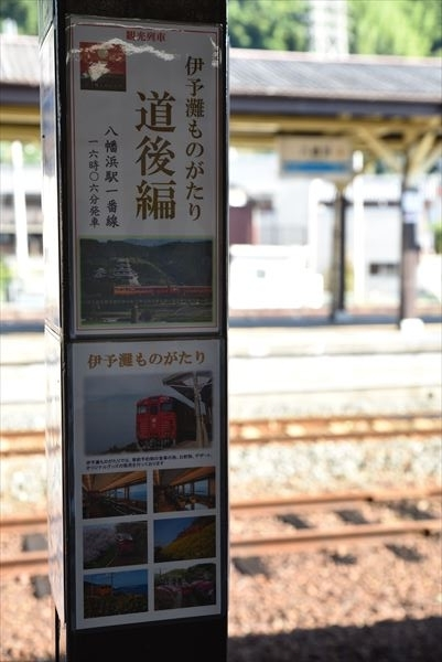 DSC_0916_R.jpg