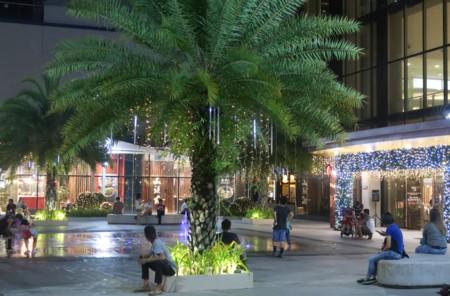 tree park (1)
