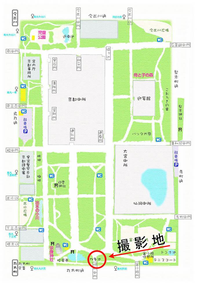 map_9515.jpg