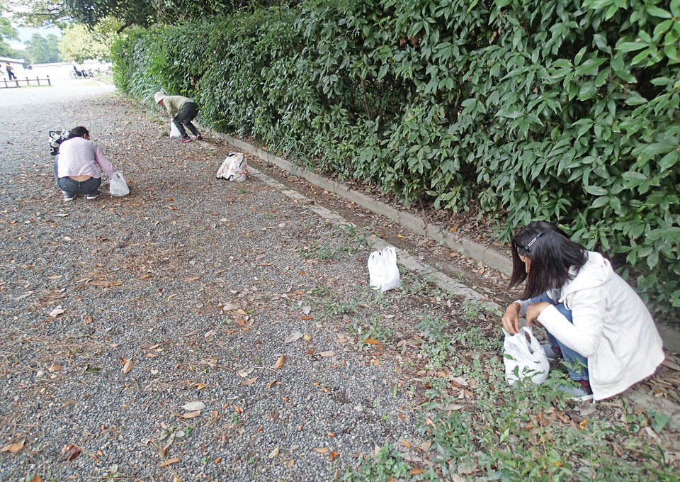 matebashii_514.jpg