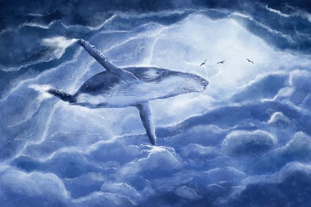 the-whale-2630647_640.jpg