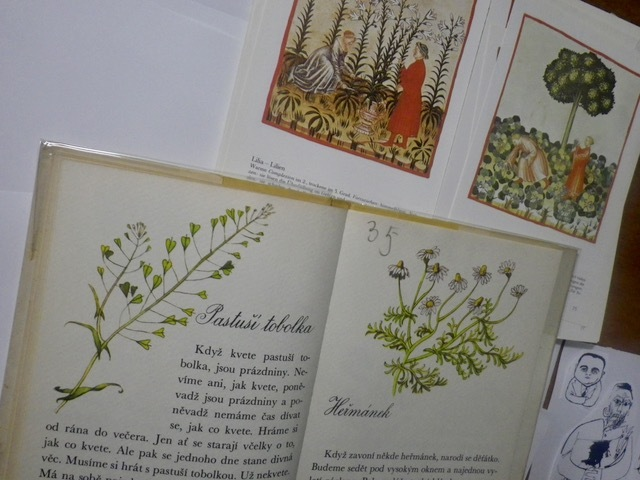 植物画資料