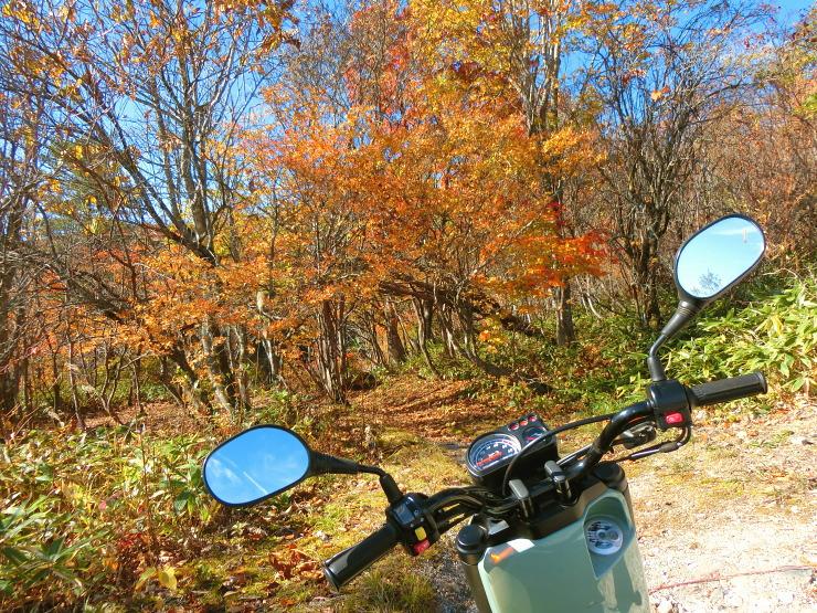 バイク × 滝