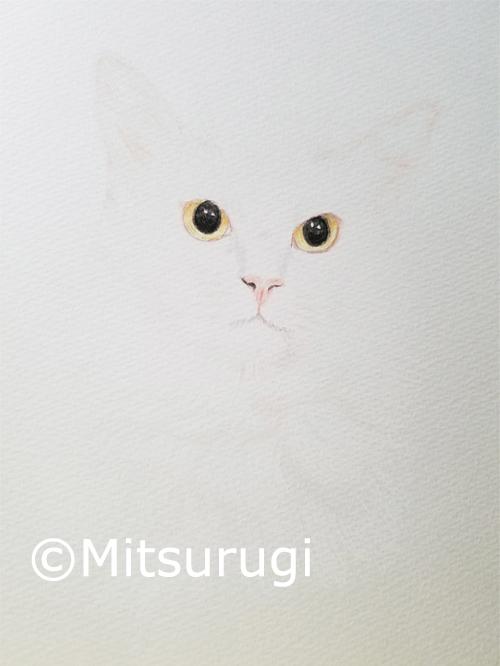 絵 イラスト 白猫