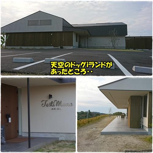 cafe10_20171115215859d32.jpg