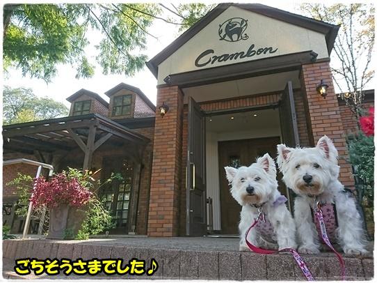 cafe17_20171018193436ca3.jpg