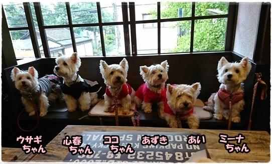 cafe20_20171027204246cf7.jpg