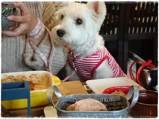 cafe8_201710271927104b4.jpg