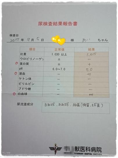 clinic1_20170928160952181.jpg