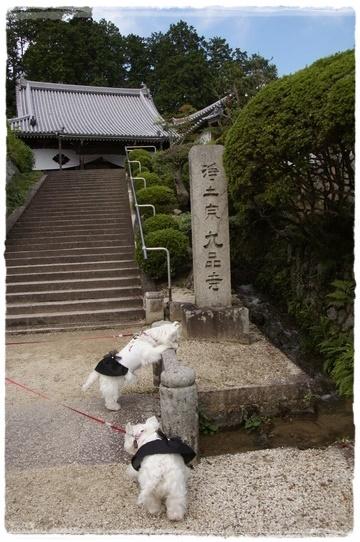 kuhonji2.jpg