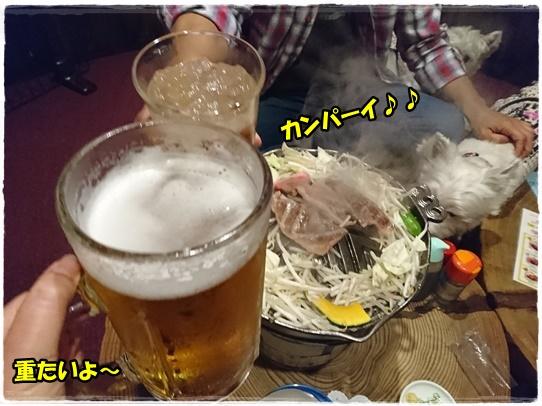 sanrokuen7.jpg