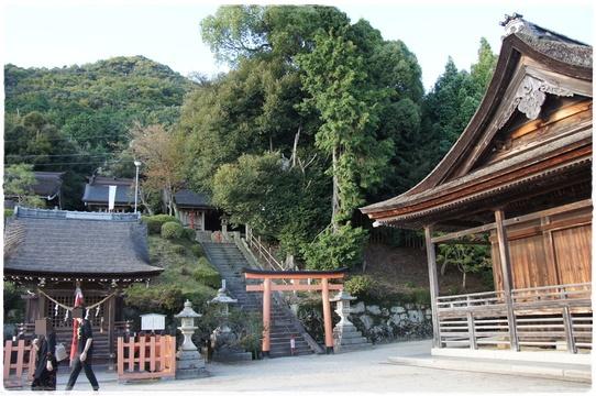 shirohigejinjya2.jpg