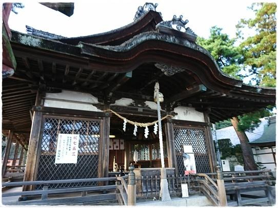 shirohigejinjya3.jpg