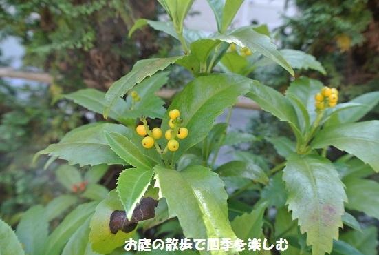 senryou7_20171110100200b07.jpg