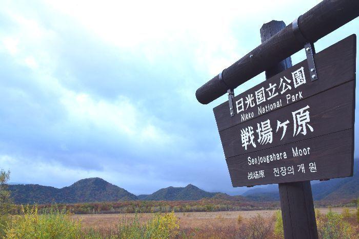 141-戦場ヶ原