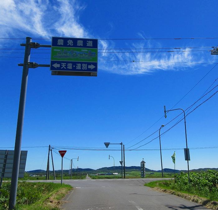 IMG_5153.jpg