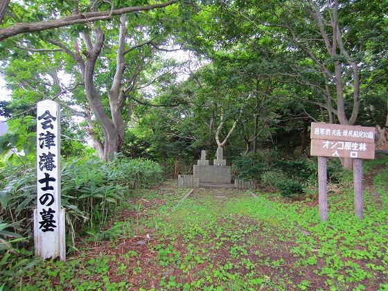 北海道 車中泊の旅 57日目-2  焼尻島 オンコ原生林