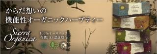 hd_image.jpg