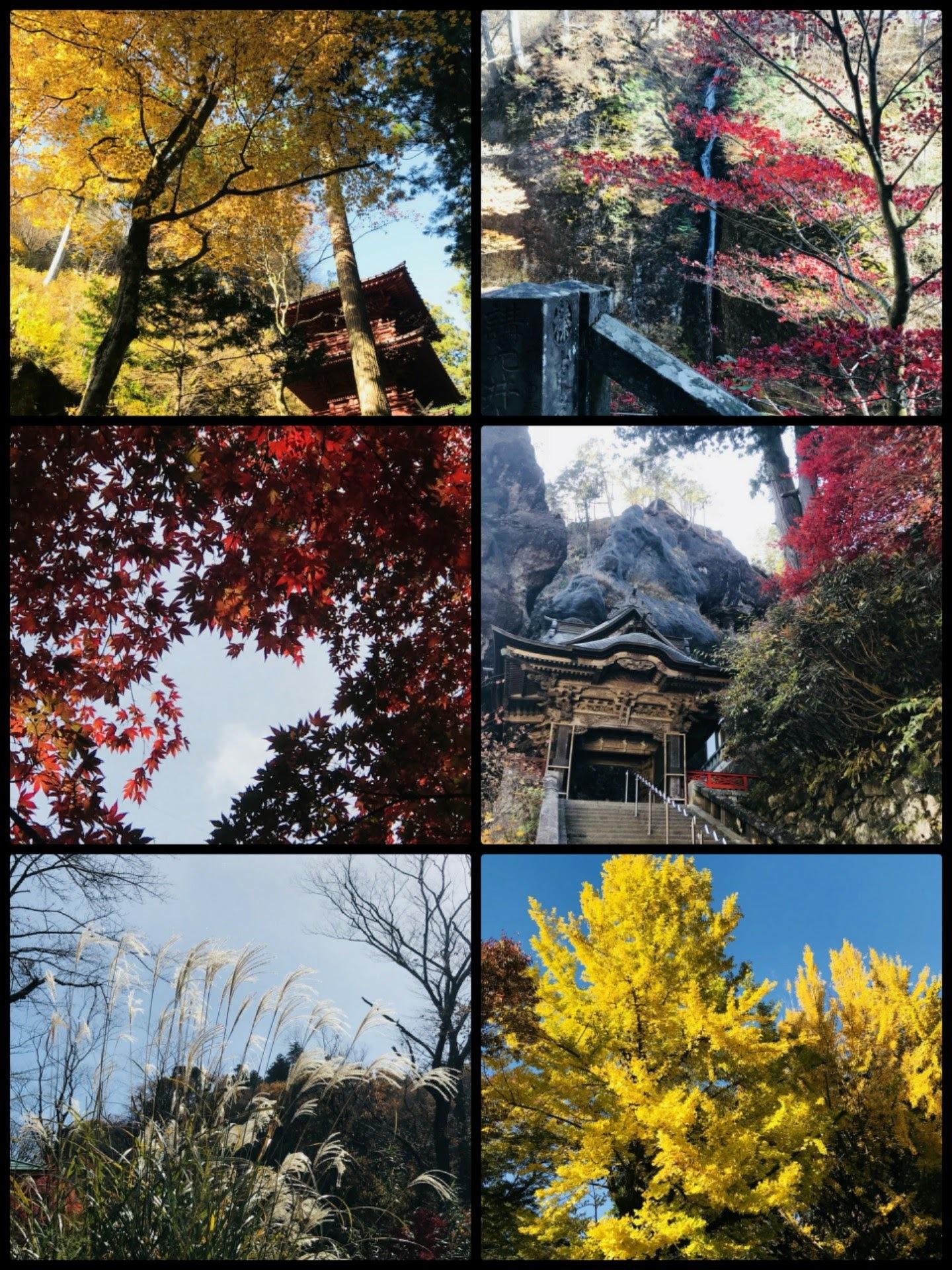 17-11-17-20-33-13-022_deco-1440x1920.jpg