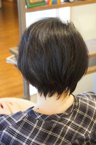 DSC02369_R.jpg