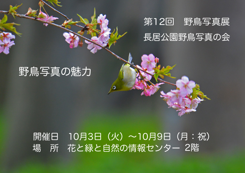 DSC_2233_edited-2.jpg