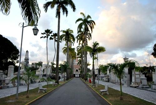 ブラジルの墓地0