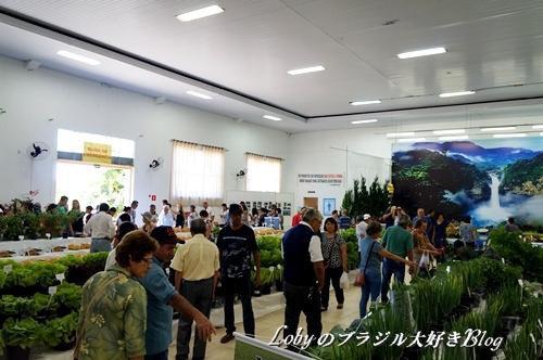 2-ふるさと祭りー009農産品