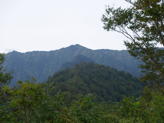 arasawa179160016.jpg