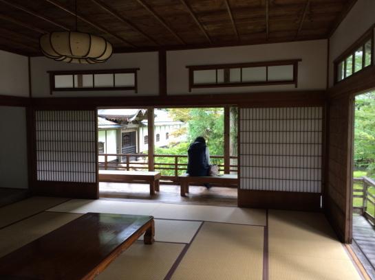 keyakien0037.jpg