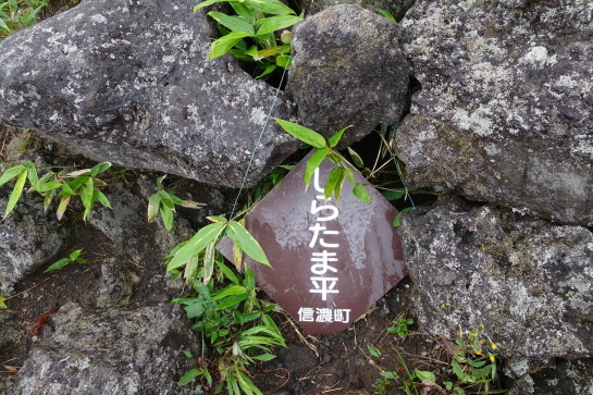 kurohime177300031.jpg