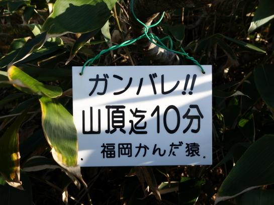 uramakihata10218.jpg