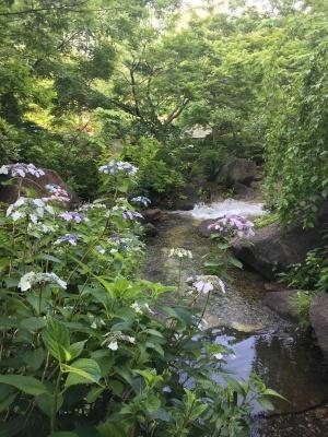hinokimachi park01