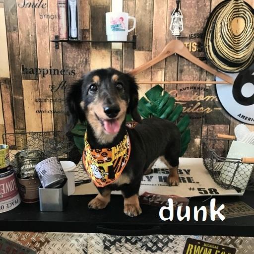 dunk 永牟田