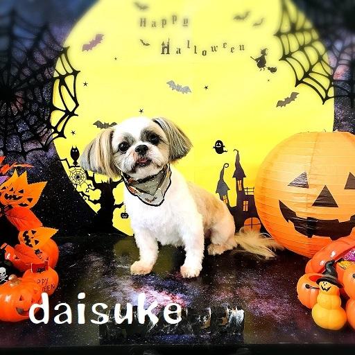 daisuke 武智
