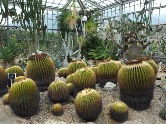 広島植物公園2