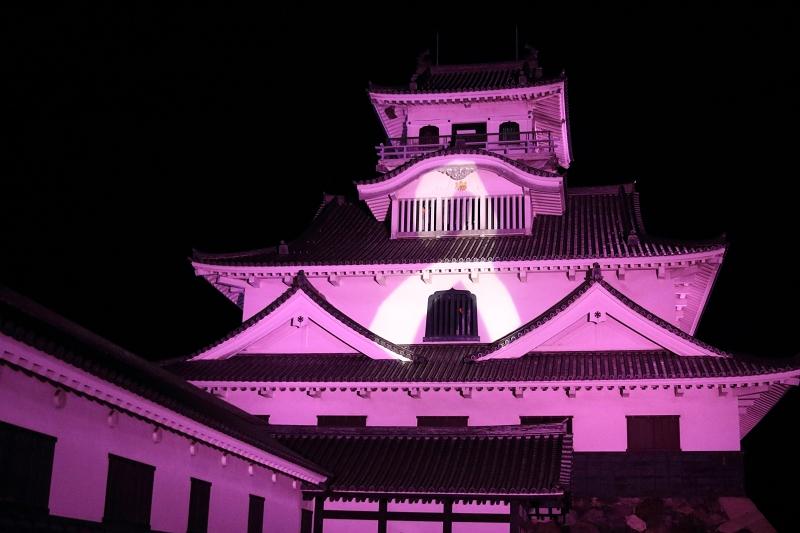 pink libon