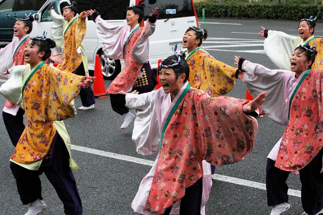 2007 17京都さくらよさこい 2
