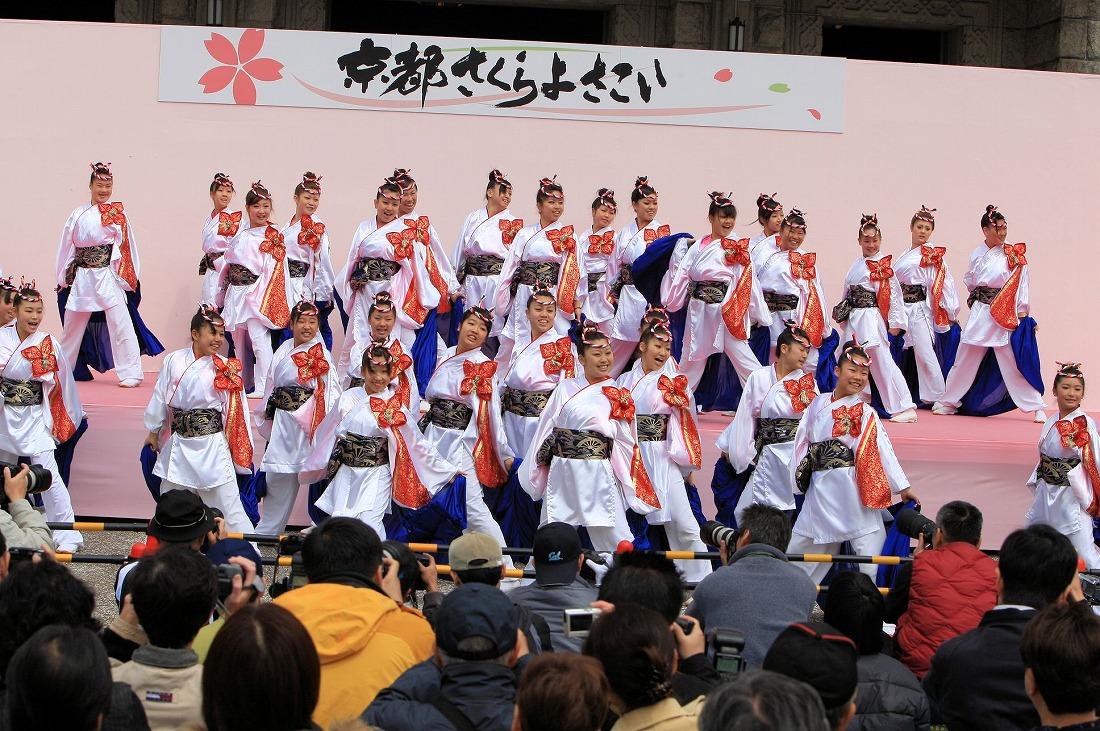 2008 11京都さくらよさこい 2