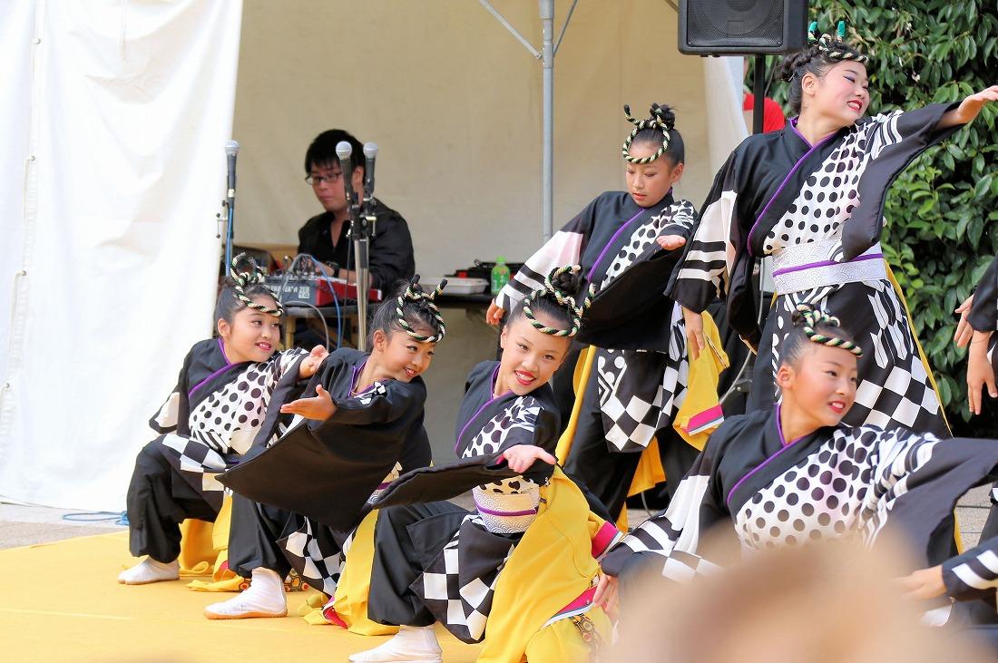 kyotogakusei17kirameki 35