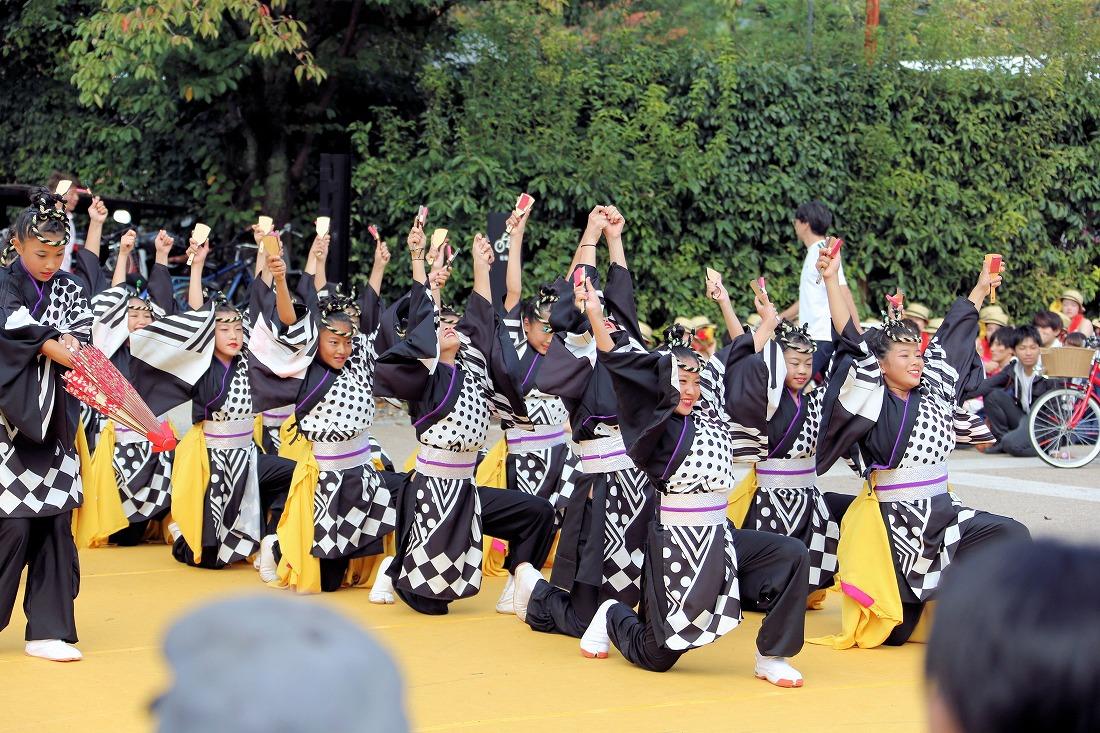 kyotogakusei17kirameki 51