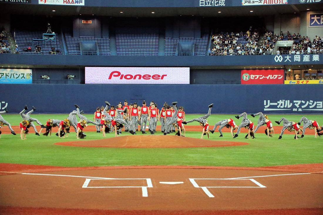 opening17sakura 36