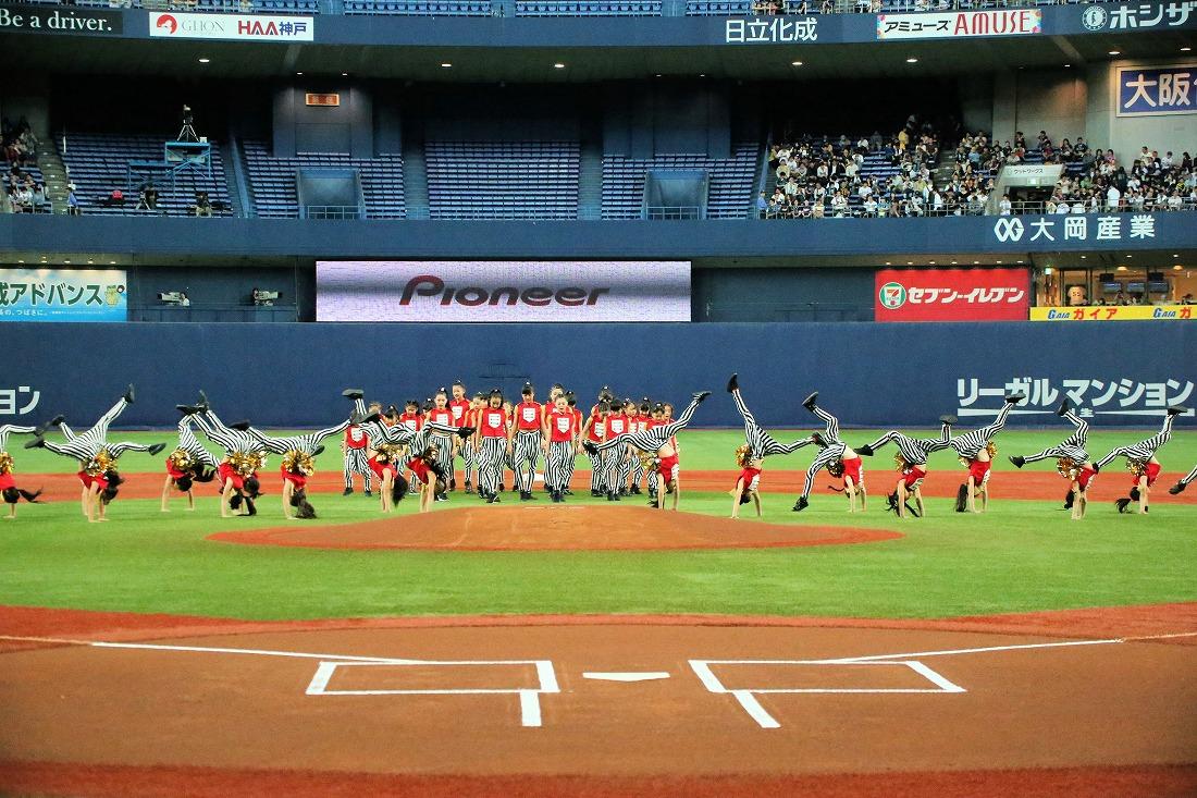 opening17sakura 37