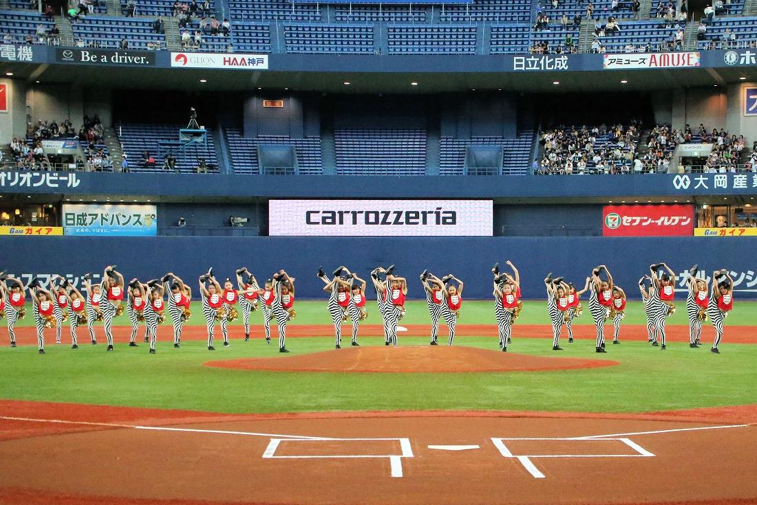 opening17sakura 54